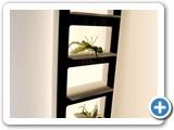 other_shelves (2)