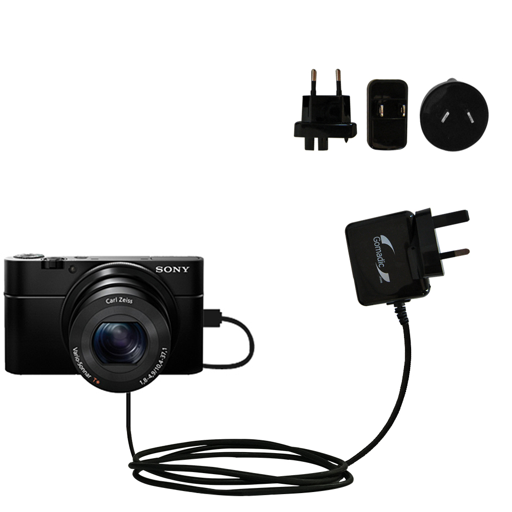International Wall Charger compatible with the Sony Cybershot DSC-RX100