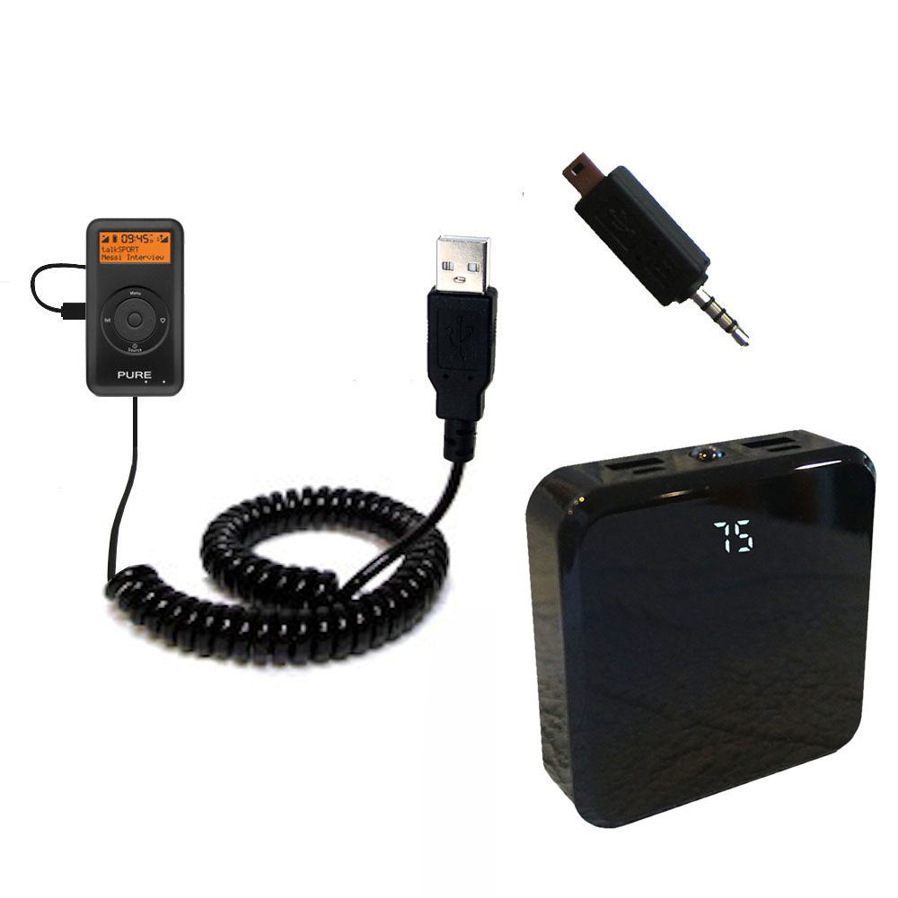Rechargeable Pack Charger compatible with the PURE PocketDAB 1500