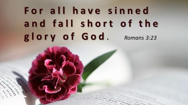 Best Bible Verses - Roman 3:23