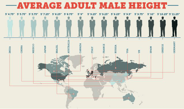 global average audlt male height